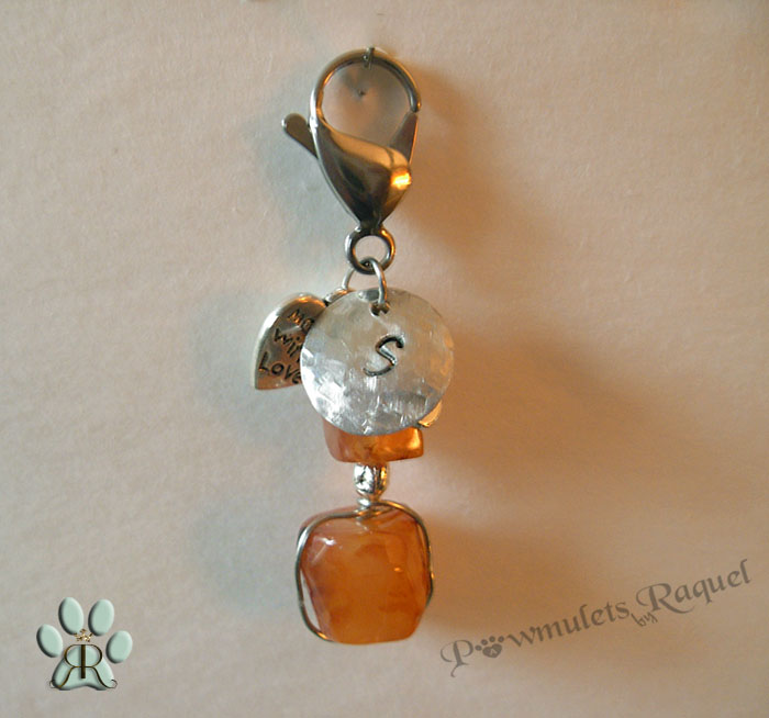 images/carnelian pet charm w initial name tag.jpg